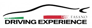 Driving Experience logo(1)