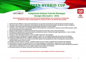 BROCHURE GREEN HYBRID CUP 2016 WORD_Pagina_09
